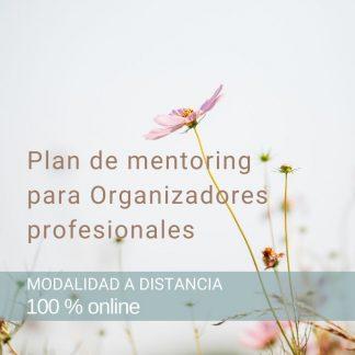 Plan de mentoring